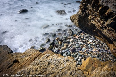 Shuwen Lisa Wu - Point Loma Tide Pools