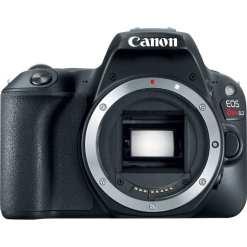 fa326e44 e944 465f aded 12ec776c685a - Canon Cameras US 24.2 EOS Rebel SL2 Body
