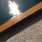 鯉シルエット4