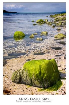 wpid-PhotoA.nl_Scotland_12.jpg