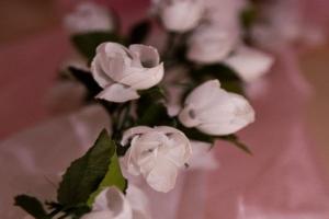dekoracja-na-sali-weselnej