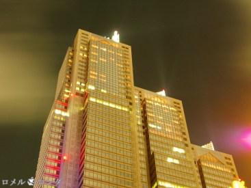 Shinjuku 2 (1)