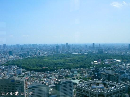 Shinjuku 33
