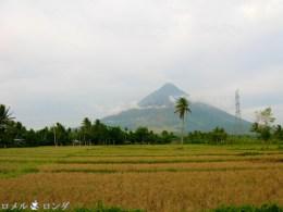 Mayon 7