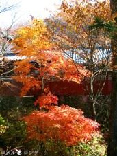 Ryuzu Falls 016