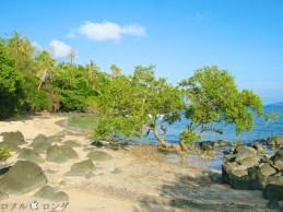 Coco Verde Beach 015