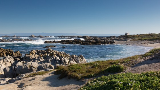 Pt Pinos, Pacific Grove.