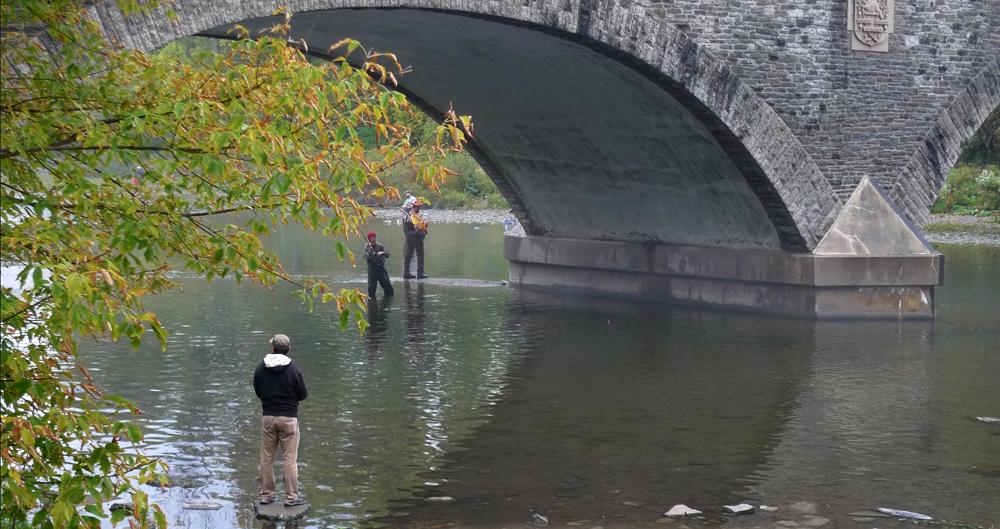 pb112-fishing