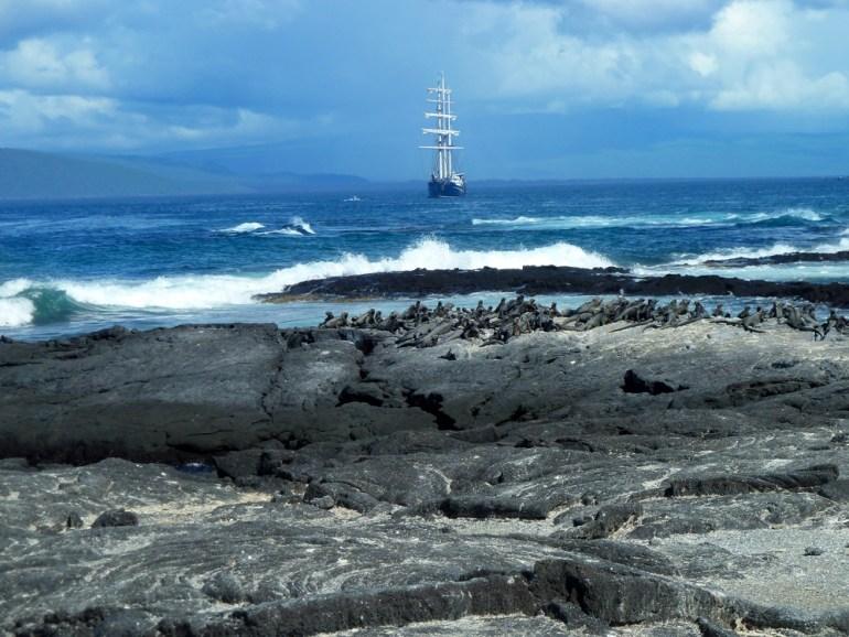 Janet-Westin-Galapagos-P1050436-adj