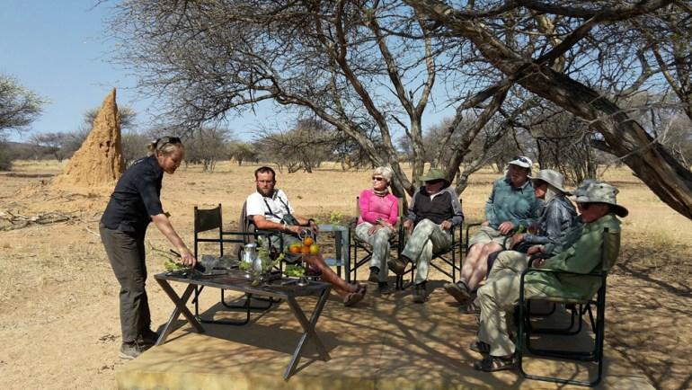 Ultimate-Safaris-Desert-Lion20150910_103940_sm