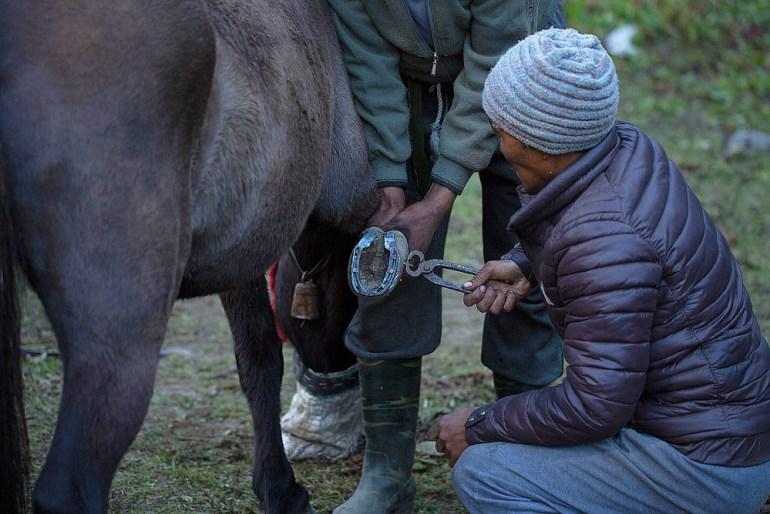 Bhutan-Chomolhari-Trek-Yury-Krylov-15-saadj