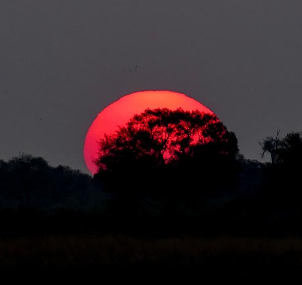 Sunset-&-Moonrise—Khwai