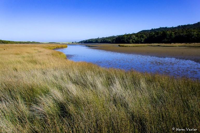 Tahakopa Lagoon