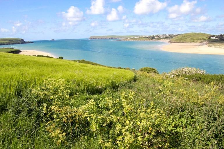 Cornwall-Barbara-Hughey-Pax-OK-IMG_0264-small-CRAdj