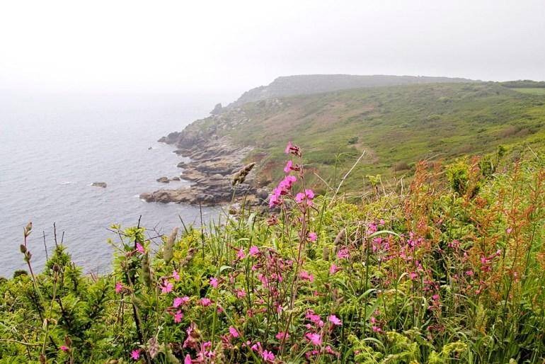Cornwall-Barbara-Hughey-Pax-OK-IMG_1258-small-CRAdj
