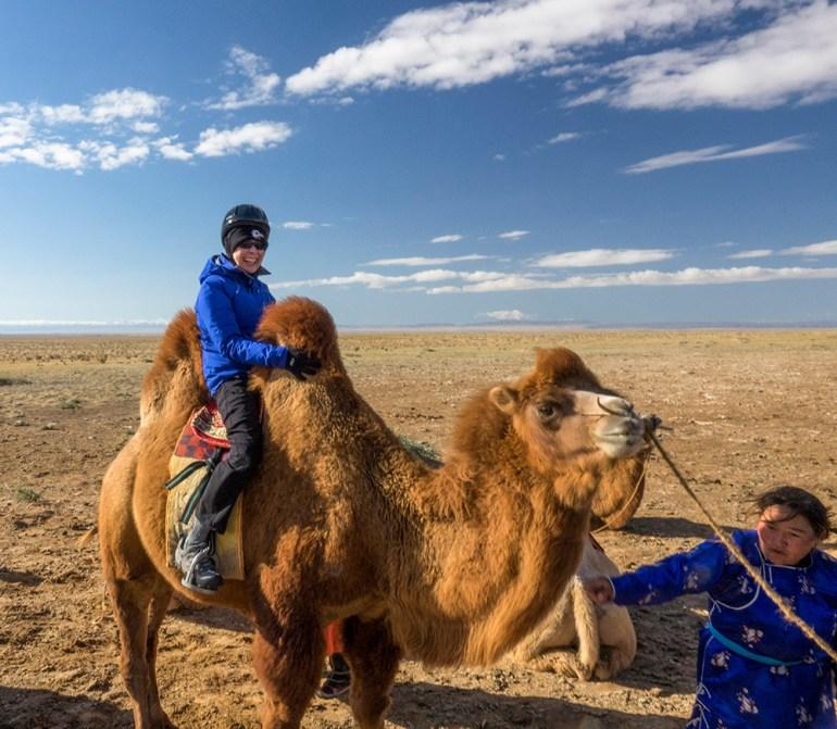 camel gobi desert