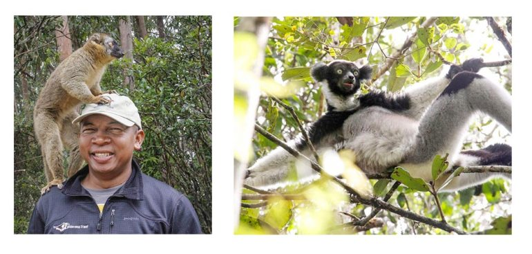 Lemur and guide in Madagascar