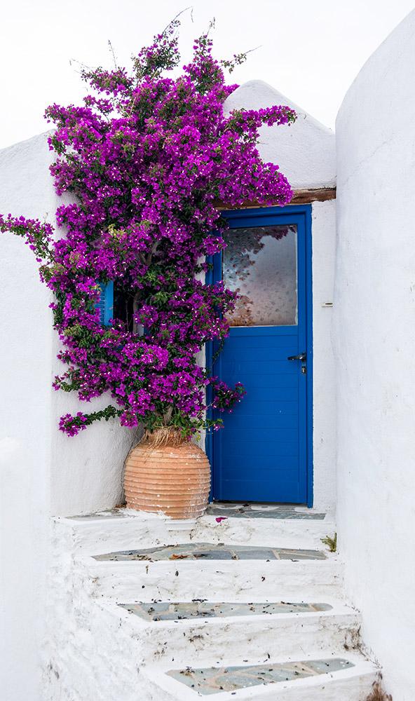 blue door bouganvillea greece