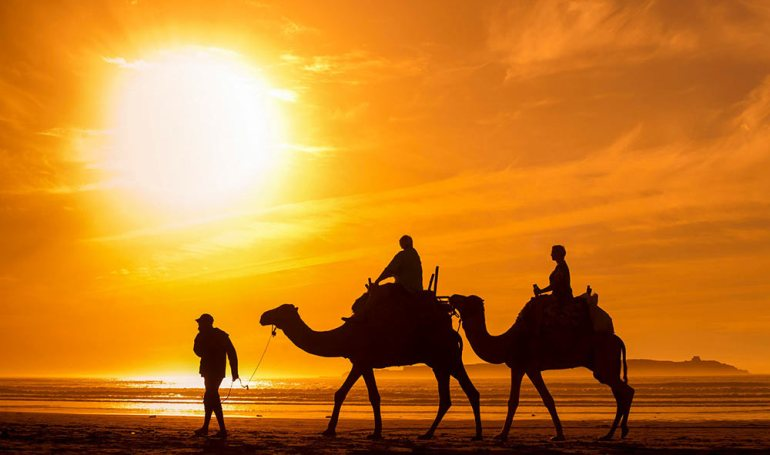 people riding camels in morocco at sunset