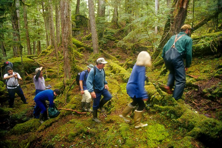 Hikers in Tongass National Park, Alaska