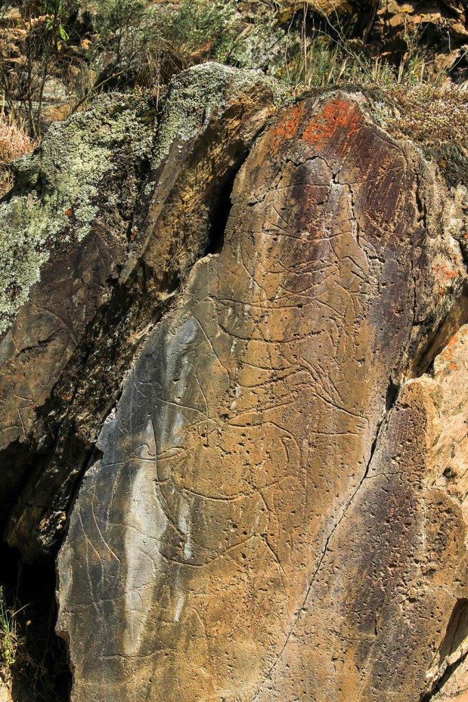 Rock art in Coa Valley in Portugal