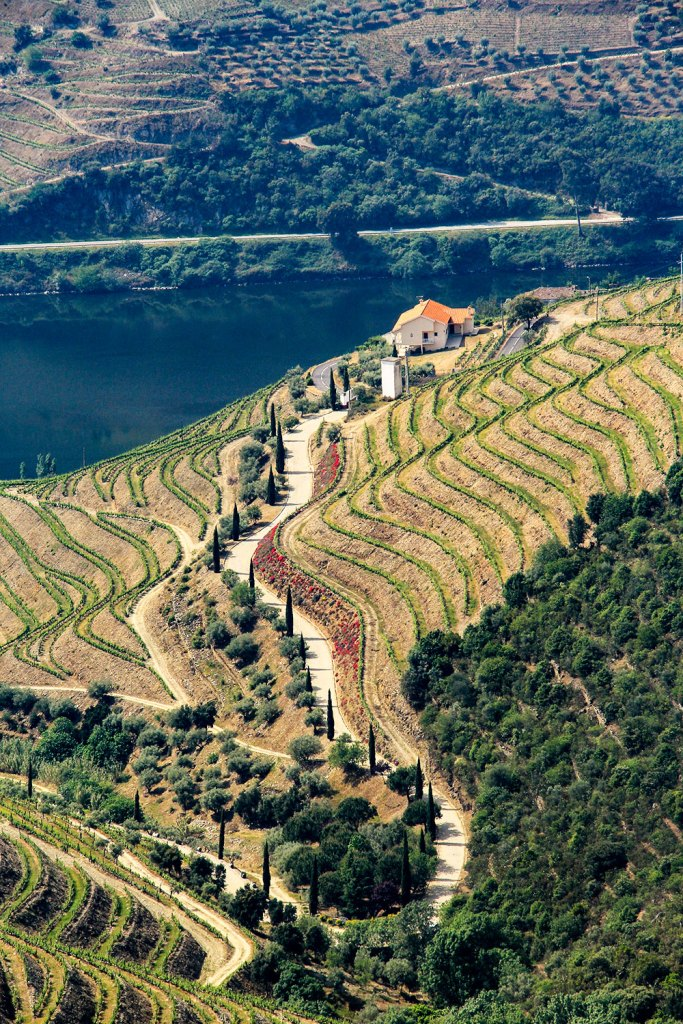 Douro Valley wineries in Portugal