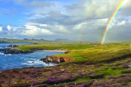 rainbow on coast