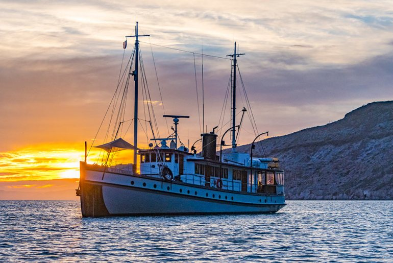 Baja by Boat: Exploring the Sea of Cortez