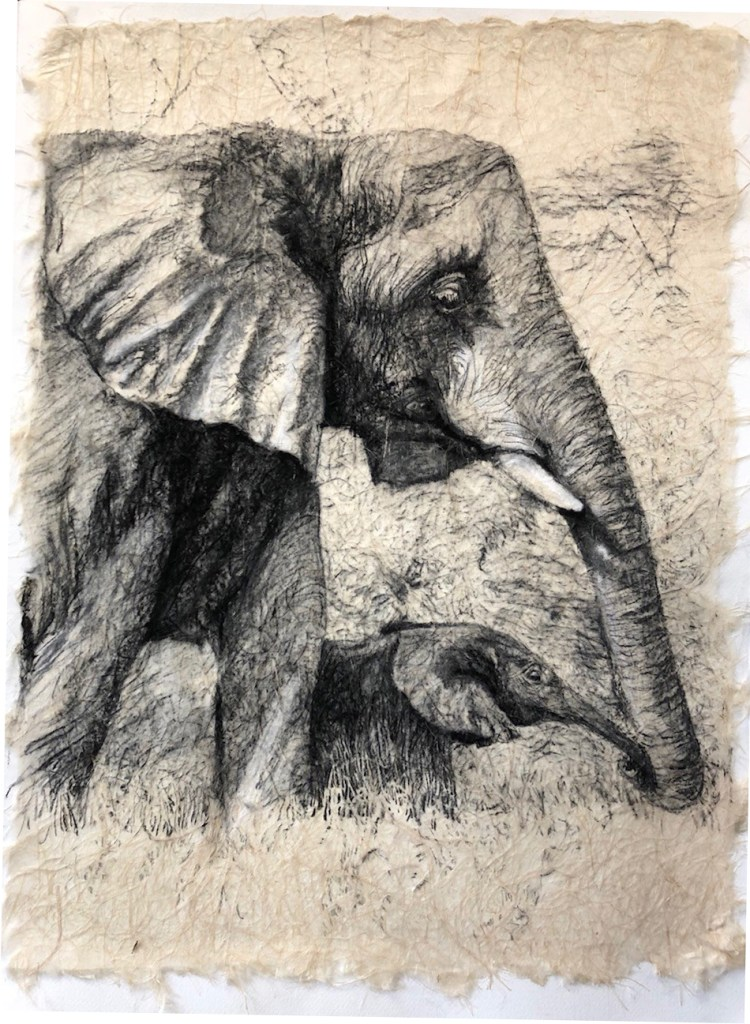 Charcoal drawing on rice paper of mother elephant with baby