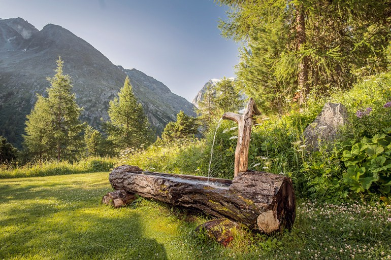 a water fountain in a tree stump on the haute route