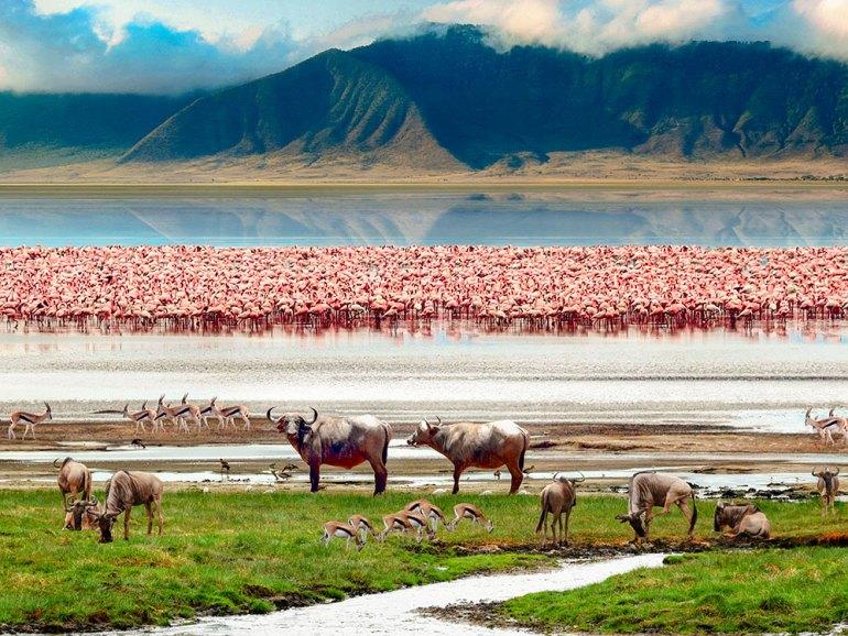 Tanzania-Ngorongoro-Crater