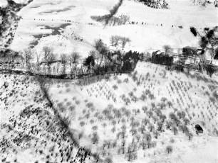 Aerial Views Benny Bartolotta 1948 (9)