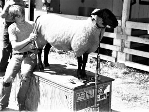 4-H moments at the Columbia County Fair 1976 (2)