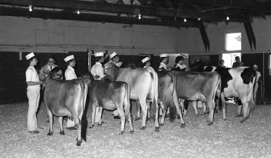 4-H moments at the Columbia County Fair 1976 (7)