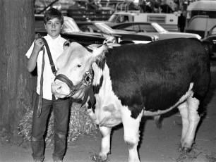 4H at the Col. Cty. Fair 1972 (5)