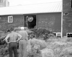 Ancram Fire Niver's Barn July 1967 (2)