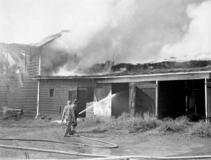 Livingston Fire Paszko Farm barn Manorton Sept 1971 (2)
