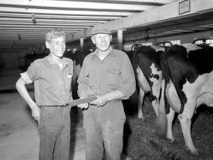 Grant Langdon Dairy Farm Copake 1963 (3)