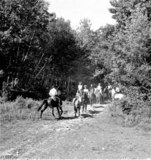 White Stallion Ranch Hillsdale 1964 (2)
