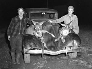Elwood Miller & Guy Rockefeller Mass. deer hunt 1950