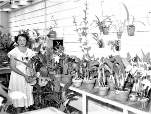 Mrs. Schultheis with her prized orchids G'town 1958