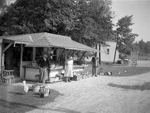 Lawrence Brothers Fruit Stand G'town 1949