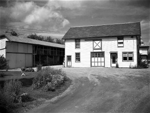 Crawford Lumber Yard G'town NY 1951
