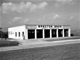 Spector Bros. Trucking Co. 9G G'town 1950 (2)