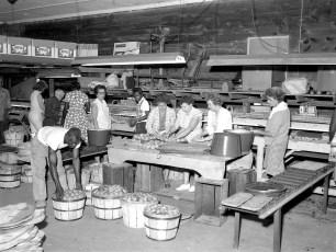 Lee Brown Farm Mt. Merino Packing Pears 1964 (1)
