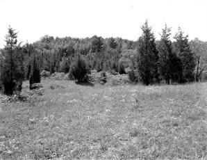 Tom Thumb Development Irving Price Blue Hill Rd. Greenport 1964 (4)