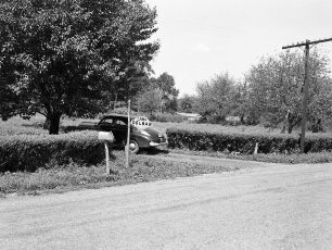 Camp Delbar Linlithgo 1952 (1)
