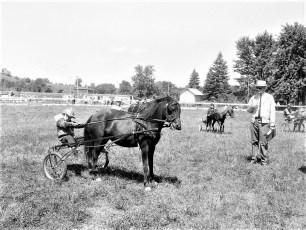 Hugo's Ranch Horse Show Livingston 1968 (1)