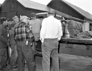 Milk Strike Red Hook & Hillsdale 1957 (3)