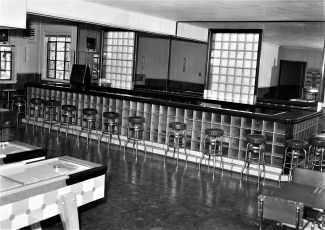 Spring Lake Lodge Red Hook 1956 (4)
